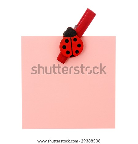 One red note and red clothespin with ladybird isolated on white background