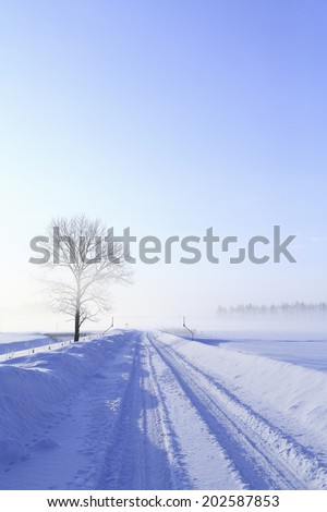 One Road In Winter