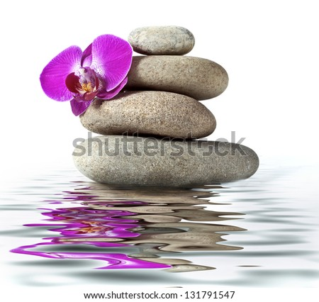 Orchid and stone with reflection