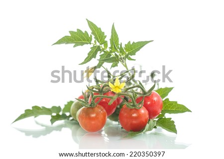 organic cherry tomatoes on a white background