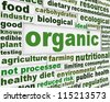 Organic products poster design. Healthy natural food message background - stock vector