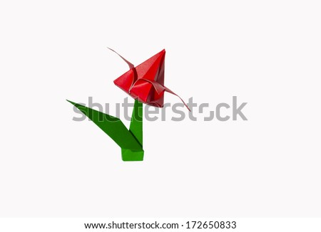 Origami red flower, tulip, isolated on white