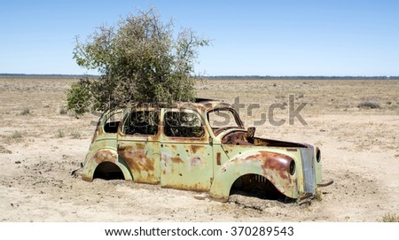 Outback, Australia - March 11, 2015: Old car wreck with tree growing through its roof