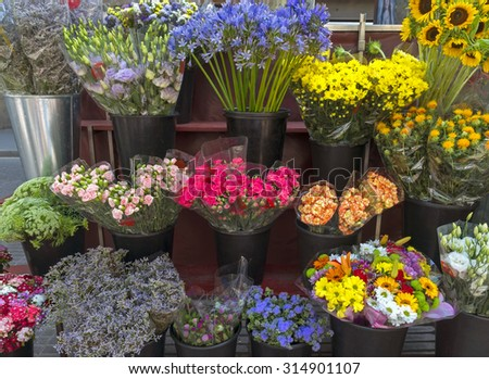 Outdoor flower market on Las Ramblas in Barcelona, Spain.