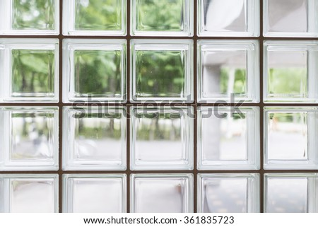 Outdoor view through glass bricks.