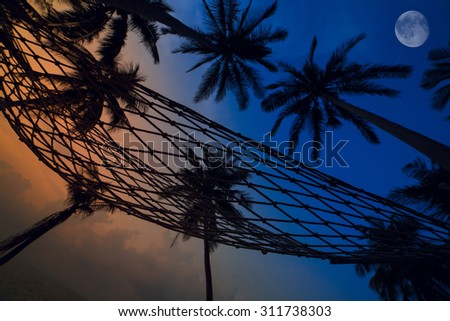 Palm Trees and hammock silhouettes on the Colorful Sky Sunset or Sunrise background with the Moon