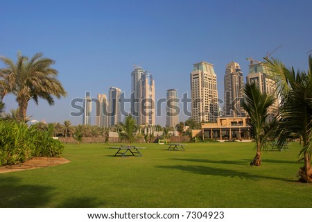 Palm Trees, Lawn And Skyscrapers And Skyscrapers