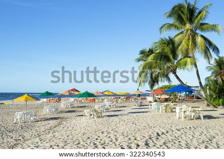 Palm trees stand over rustic village beach with beach chairs and umbrellas on the northeast coast of Brazil
