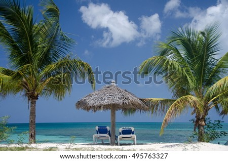 Palms, beach chairs and palm leaf umbrellas on beautiful Cocobay beach, ANtigua and Barbuda