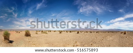 Panorama of the Devil's Cornfield, showing the parched earth and generic vegetation, in Death Valley National Park, California, USA