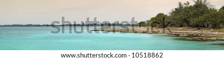 Panorama of tropical cuban beach with vegetation