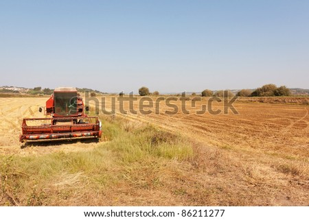 Panorama view of lowlands of wheat in Portugal during autumn