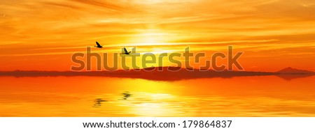 panoramic landscape of sunrise over the sea