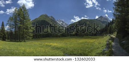 panoramic view of mountain in Valmalenco - Italy