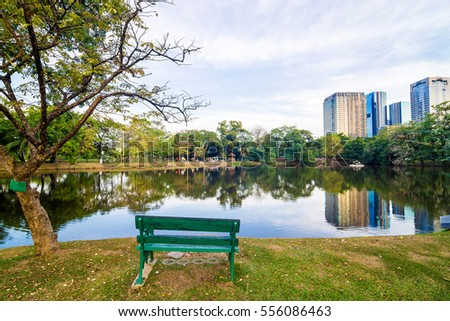 Park bench near pond in a quiet city on  sunny day on background of trees