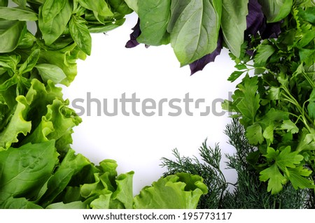 Parsley, lettuce, dill