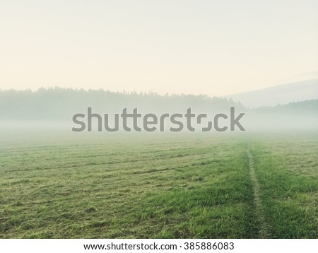 Path going through the misty green field. Rural landscape.