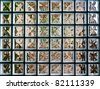 Pattern of Glass Block Wall - stock photo