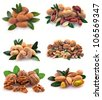 Peanuts, cashews, pistachio, almonds, walnuts, Brazil nuts and hazelnuts on a white background - stock photo