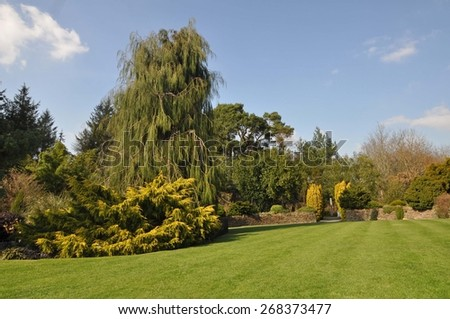 Perfect lawn within an established English country garden, boarders and mature trees and shrubs add to the flow of the garden.