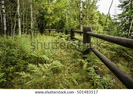 Perspective of sturdy fence between autumnal woods and steep bluff (off camera) in Big Bay State Park on Madeline Island, Wisconsin, USA, for themes of safety, preservation and the environment