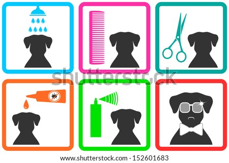 pet care icons with fashion doggy with sunglasses