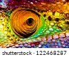 Photo of colorful reptilian eye, closeup head part of chameleon, multicolor scaly skin of lizard, african animal, beautiful exotic iguana, wild nature, fauna of rainforest - stock photo