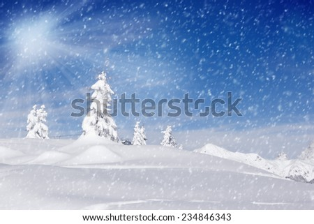 Photo of winter landscape with trees covered by snow