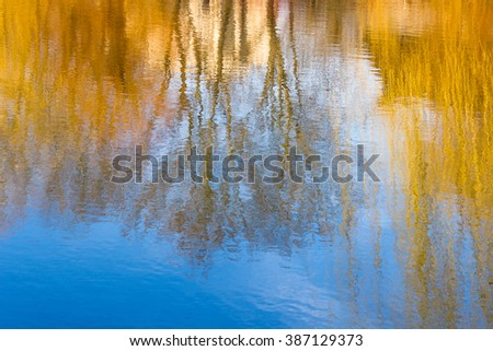 Photography blur tree reflection on water. Natural background.