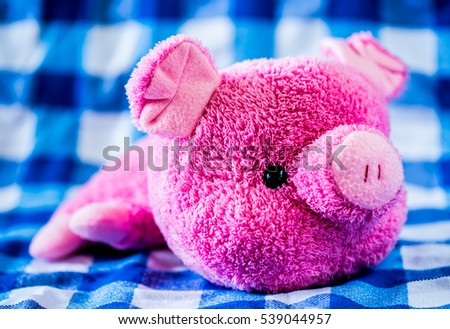 pig doll on cloth