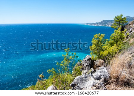 pine against sea, Alanya peninsula, Antalya, Turkey