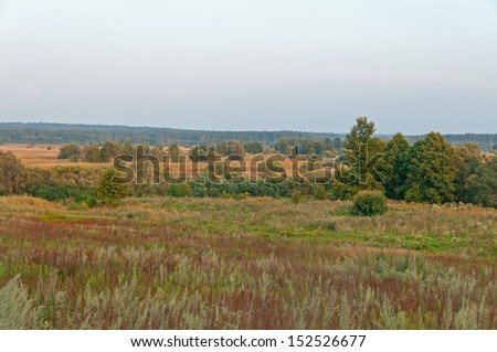 Plain landscape with sunny meadow and trees before forest. Kaluzhsky region, Russia.