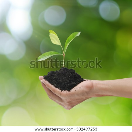 Plant on hand and clouds world map background
