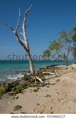 Playa Blanca Beach outside of Cartagena, Colombia