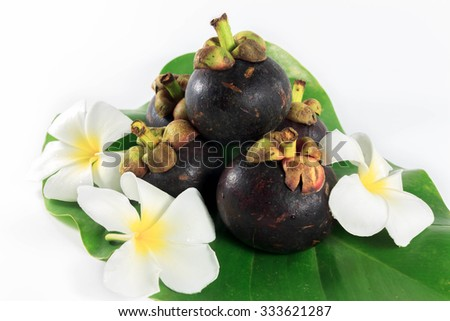 Plumeria,mangosteen,leaf on white background