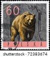 POLAND - CIRCA 1965: A Stamp printed in POLAND shows image of a Brown Bear, series, circa 1965 - stock photo