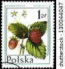 "POLAND - CIRCA 1977: A stamp printed in Poland shows Wild strawberry (Fragaria vesca), with the same inscription, from the series ""Forest fruits"", circa 1977 - stock photo"