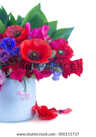 Poppy, sweet pea and corn flowers in pot   isolated on white background