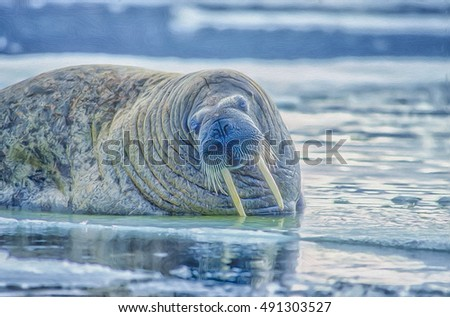 Portrait of bull walrus in Canadian High Arctic,Digital oil painting