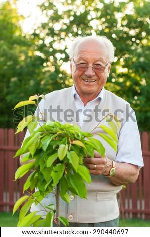 Хозяйка уговорила садовника фото 561-107