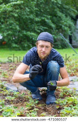 portrait of young handsome bearded man gardener sitting in yard holding small sprout in hands in gloves