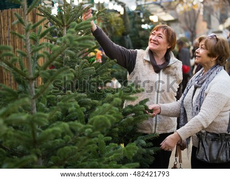 positive american  female pensioners buying New Year tree at fair