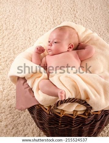 pretty newborn in a brown basket on a carpet