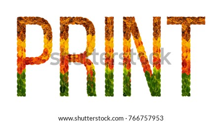 how to print a banner in word