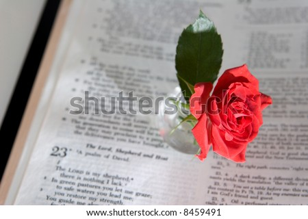 Bible Verse Ecclesiastes 3to Everything There Stock Photo 327588 Shutterstock