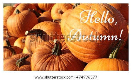 "pumpkin background and the words ""hello autumn"" 4"