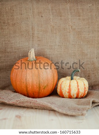 Pumpkins on a sack, selective focus
