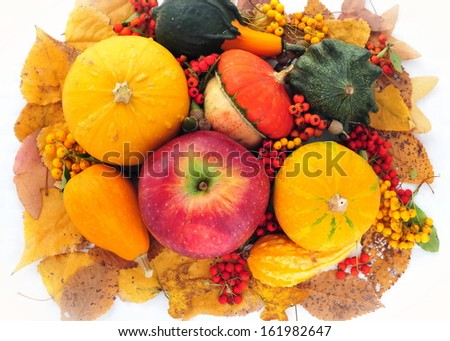 Pumpkins with autumn leaves in background