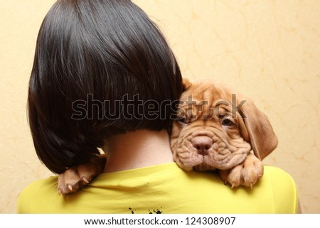 puppy dog breed Dogue de Bordeaux