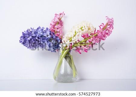 purple and pink hyacinth flowers